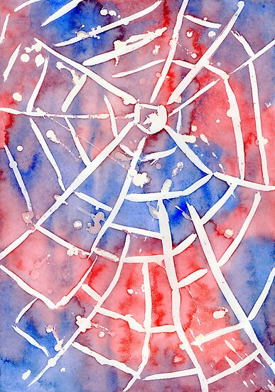 The Web by Sarah Donoghue