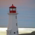 Pink Sunset at Peggy's Point by Roxane Bay