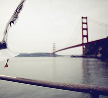 Freedom - San Francisco Golden Gate Bridge by Beata English