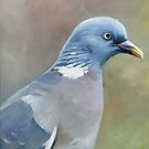 Pigeon Oil Painting by Charlotte Yealey