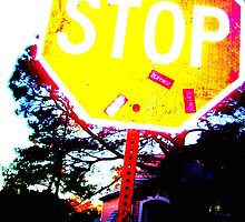 My Crazy Stop Sign by reneeasaurus