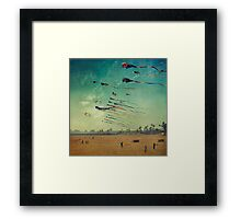 High Flyers Framed Print
