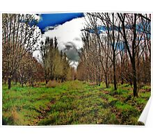 Apple Orchard on Old Hwy. 30 Poster