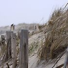 Tower Beach Delaware by Gregg Tulowitzky