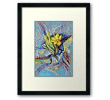 Daffodil in my rock garden I Framed Print