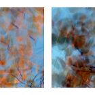 Autumn Impressions - Diptych #3 by Kitsmumma