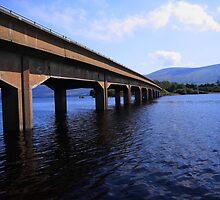Blessington Bridge by Paul  Kane