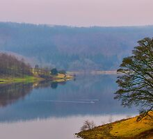 Derbyshire Reflections II by Mabs