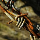 Barbed Wire by rhian mountjoy