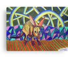 307 - BILBY - DAVE EDWARDS - COLOURED PENCILS - 2010 Canvas Print