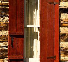 Reynold's Cabin Window by Catherine Fenner