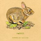 Rabbit in the woods by Revelle Taillon