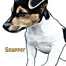 Snapper by Dick  Iacovello