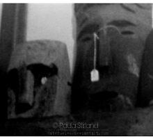 Three wise heads by Gozza