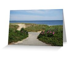 Wild roses path to beach Greeting Card
