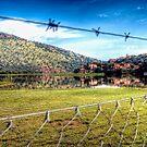 Villas Ile Du Lac Hartbeespoort Dam/Lake (2) by JandeBeer