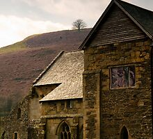 Valle Crucis (Valley of the Cross) Abbey by David J Knight