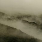 landscapes #58, mist by stickelsimages