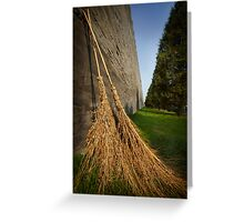 Straw Brooms and  Forbidden Palace Greeting Card