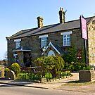 The Water Wheel Inn - Liverton by Trevor Kersley
