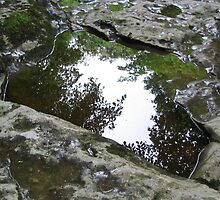 Reflection Yorkshire UK by patjila