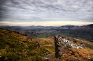 Towards Keswick by David Robinson