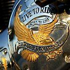 Harley Davidson by JpPhotos