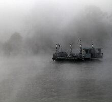 Foggy Morning. by Steve Chapple