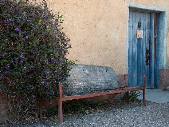 The Blue Bench by Lucinda Walter