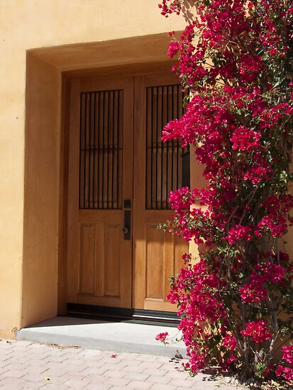 The Bougainvillea and the Door by Lucinda Walter