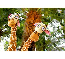 Giraffes and the palm trees Photographic Print