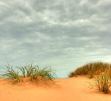 Red Sand Dune by Artimagery
