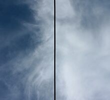 Power Line for Barnett Newman by Daniel Owens