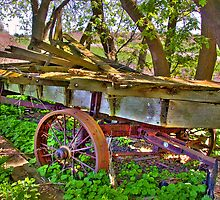 The Old Wagon by ECH52