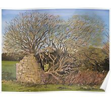 """""""Withy Barn"""" - The Somerset Levels Poster"""