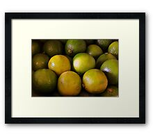 Tangy Framed Print