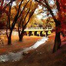 Golden Afternoon by Erica Yanina Lujan