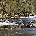 Little River Pano by Mitchell Tillison