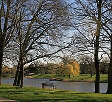 Spring In Lincoln Park Lagoon by kkphoto1