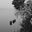 Mist on Hay River by pennyswork