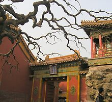 Beijing - The Forbidden City by Deanna Roberts Think in Pictures