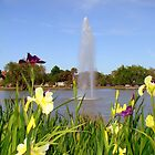 Irises In City Park by Wanda Raines