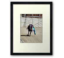 RES 2010 - 36 Framed Print