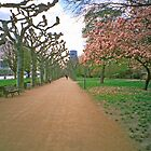 Riverside, Springtime, Frankfurt-am-Main by Priscilla Turner