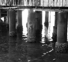 Under The Boatshed by Ray Fowler