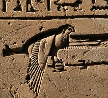 Bird hieroglyph 2 by rhallam