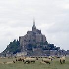 Mont St Michel by Peter Doré