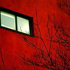 A window in red by Anisul Hoque