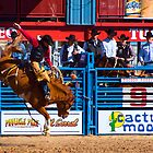 The Cowboy by Justin Baer