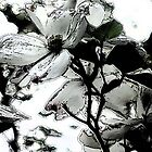White Flowers - Inked by KatMarieArt
